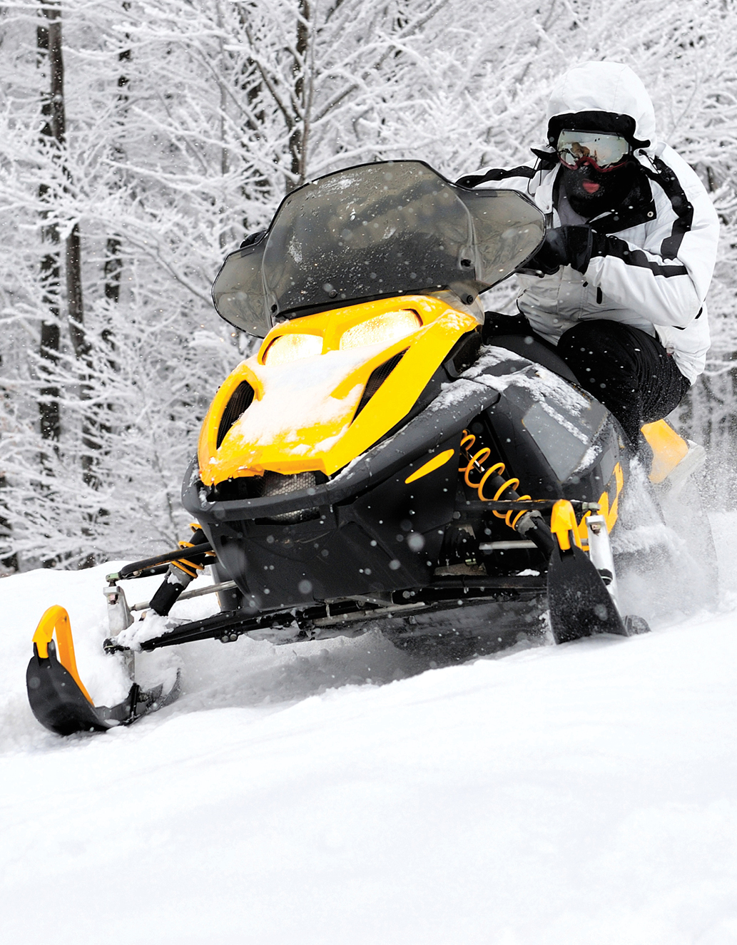 Snow_City_Cycle_Marine_454310442