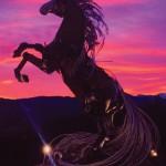 Whitehorse_583852507
