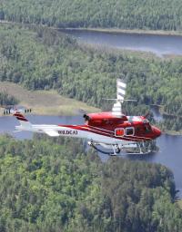Wildcat_Helicopters_2543807051