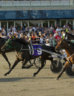 Woodbine_Entertainment_293025991