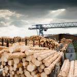 softwood lumber 2