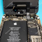 Apple iPhone disassembled showing components inside