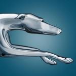 Greyhound Canada logo