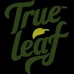 True Leaf Closes Repayment Deferral Transaction
