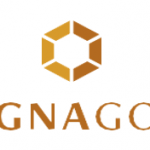 Magna Gold Corp Intersects 1
