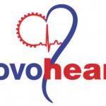 Novoheart Holdings Inc