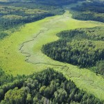 Ducks Unlimited Canada and Louisiana-Pacific Building Solutions Sign Landmark Conservation Agreement to Support 6