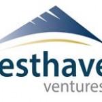 Westhaven Commences Drilling at Shovelnose Gold Property