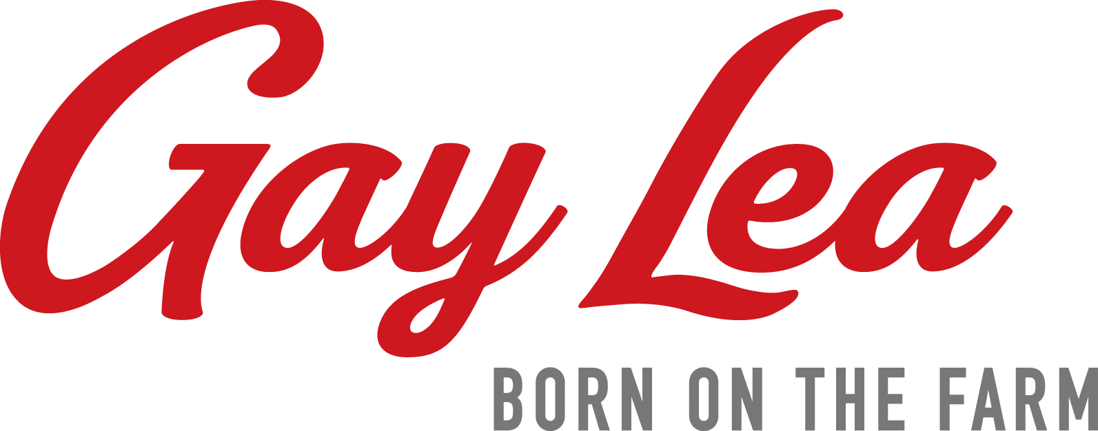 Canadian dairy sector failed again by Ottawa – Gay Lea Foods