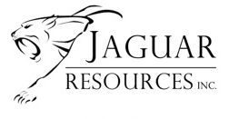 Jaguar Provides an Update on the Filing of 2019 Year-End Disclosure