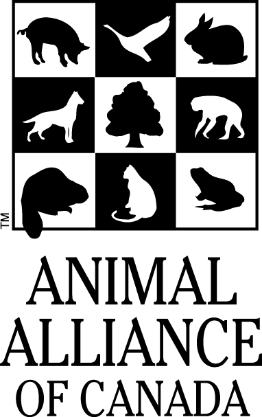 What Animal Alliance of Canada would like everyone to know about COVID-19 Vaccine Testing