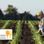 BASF Canada donates over $64,000 to Food Banks Canada