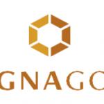 Magna Gold Corp