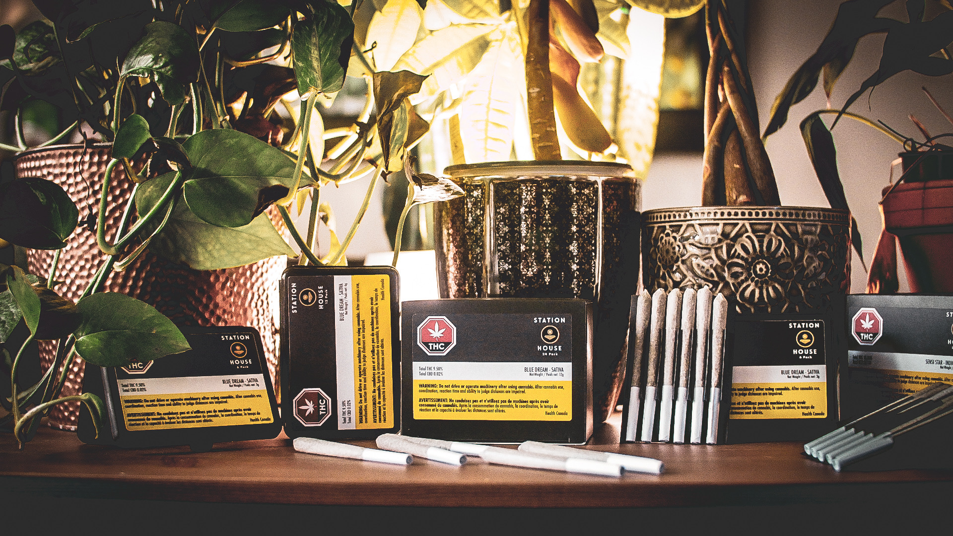 """Sensi Brands Inc. Receives Health Canada Sales License, Makes another Veteran Appointment, and Announces Launch of New Pre-Roll Brand """"Station House""""."""