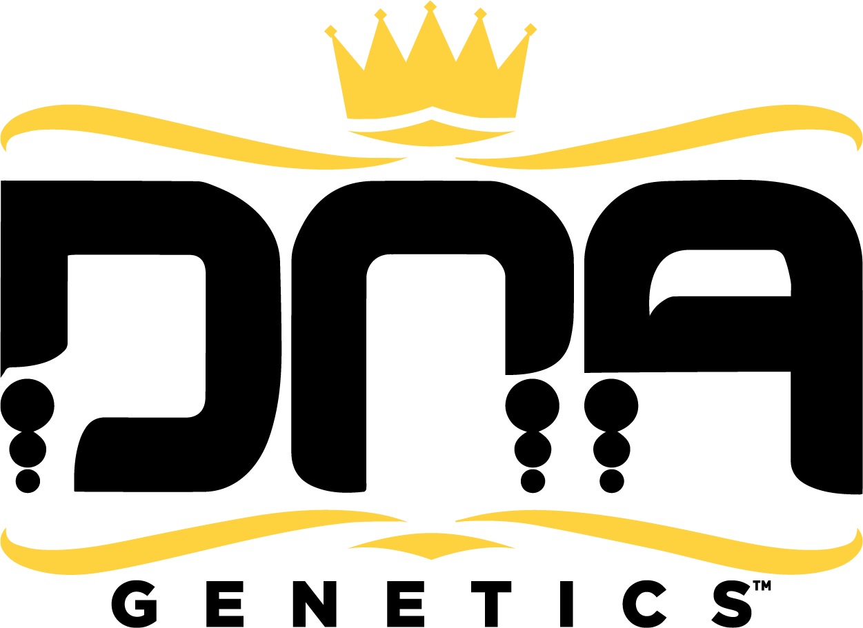 DNA Genetics Announces Launch of Premium Flower with Dr
