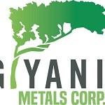 Giyani Addresses Recent Trading Activity