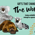 WWF-Canada releases four new species to symbolically adopt this holiday season