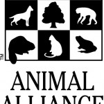Animal Alliance Finds Disturbing Increase in Numbers of Animals Used in the Most Painful Kinds of Experiments in Canada