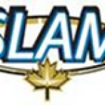 SLAM Reports Elevated Gold Values From Soil Survey