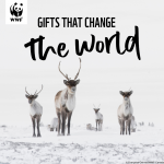 It's not too late to give a meaningful holiday gift!