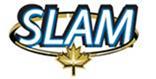 SLAM Gold Veins Assay Up to 3,955 g/t Gold