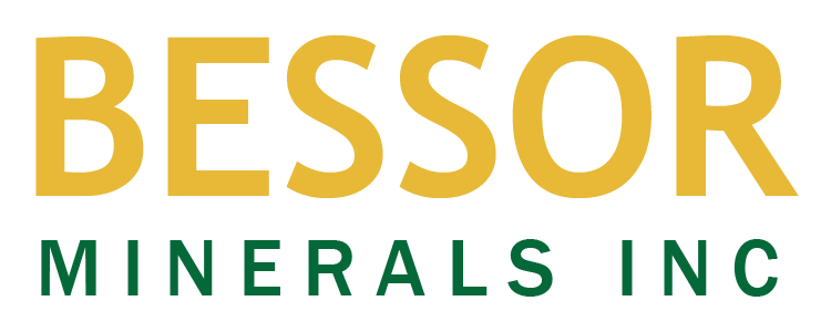 Bessor Appoints New Auditor