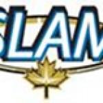 SLAM Soil Samples Grade Up to 206 ppb Gold