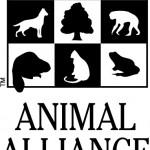 Animal Alliance of Canada: Primates Subject to Cruel Research in Canada
