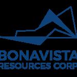 Bonavista Resources Corp. intersects 4.43 g/t Au over 10