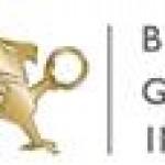 BMG Group Inc