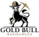 REPEAT -- Gold Bull drills several shallow high-grade intercepts including 13.7m @ 10.95 g/t Au from 41