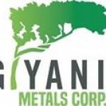 Giyani Provides Update on Otse Prospect Exploration Program in Botswana and Announces Grant of Stock Options