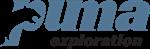 Puma Exploration Reports Progress on Its 2021 Exploration Program at Williams Brook Gold Property in New Brunswick, Canada