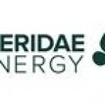 Pieridae Evaluating Goldboro LNG Strategic Alternatives