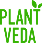 Plant Veda announces co-marketing initiative with one of the nation's largest Chinese-Canadian online grocery delivery services, Luniu Mall