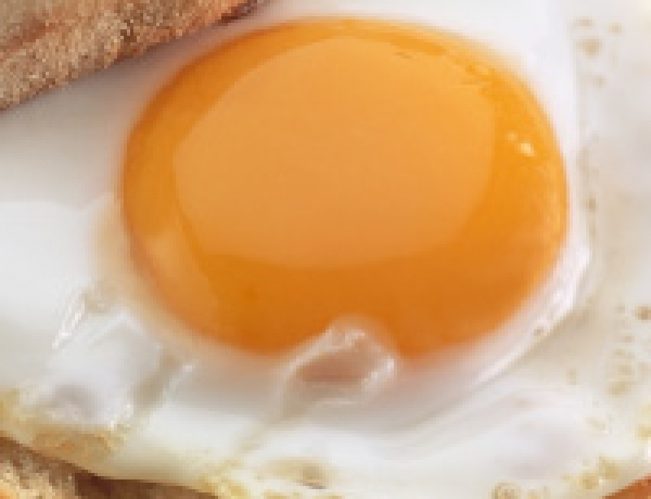 Canadian Poultry and Egg Processors Council