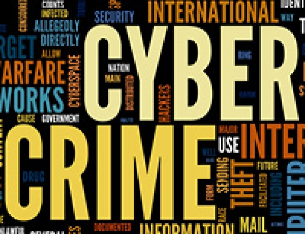 Prepare Now to Survive Perfect 'Cyber Crime' Storm Ahead