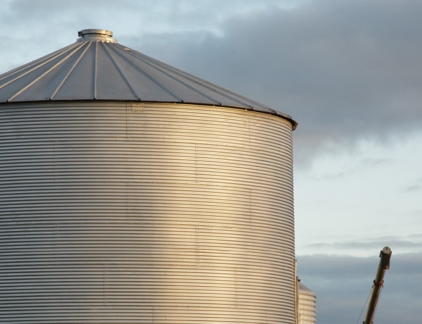 Darmani Grain Bins