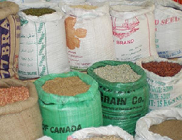 Great Western Grain