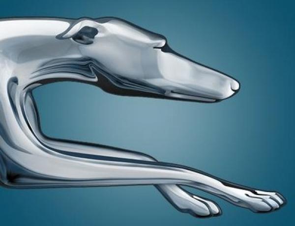 Greyhound Halting Western Bus Service