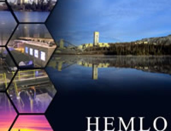 Hemlo Mines