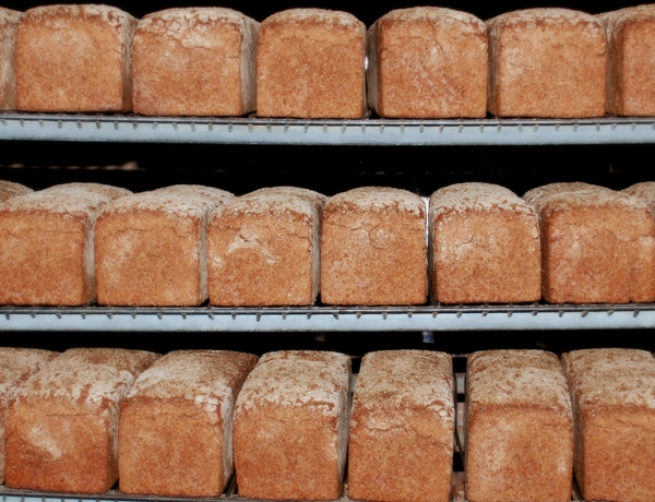 Kasseler Whole Grain Breads
