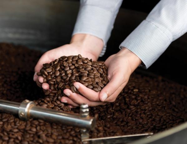 Kienna Coffee Roasters