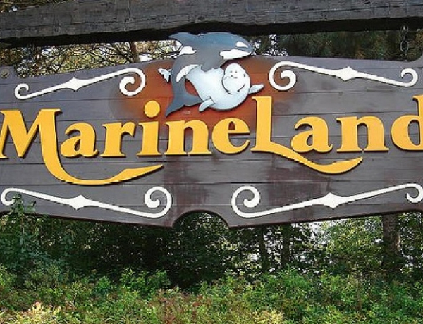 Marineland Facing More Animal Cruelty Charges