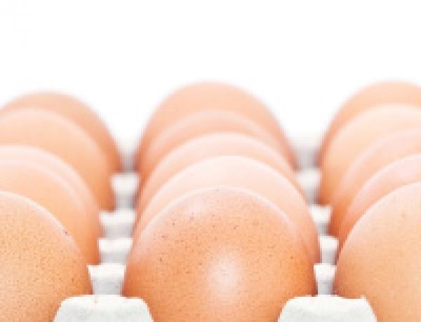 Maritime Pride Eggs