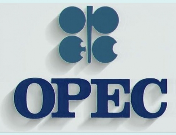 Oil Rises on Expected OPEC Cut