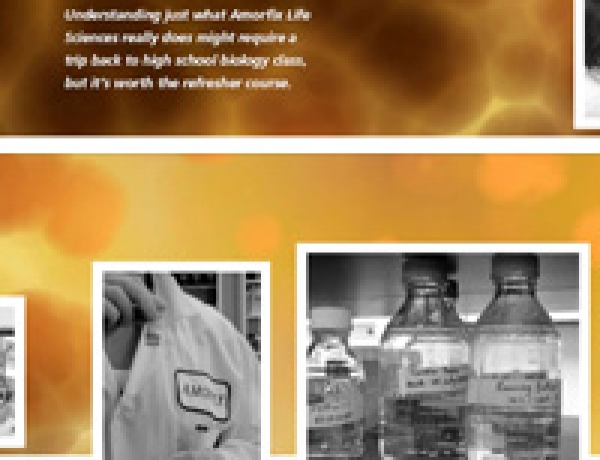Amorfix Life Sciences