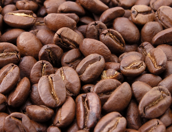 Arabica Beans at 13-Year Price Low