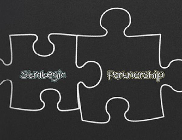 Strategic Partnerships – Do They Work?