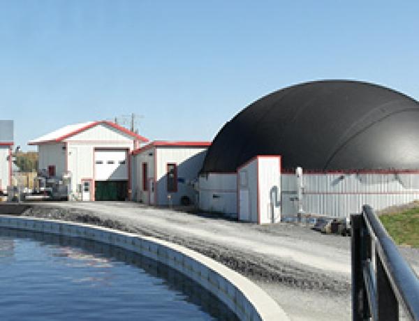CH-Four Biogas